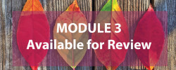 Module 3: Zoning Process and Subdivision Regulations Available for Review